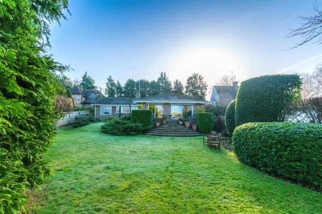 Thumbnail Detached bungalow for sale in Wellgreen Lane, Kingston, Lewes