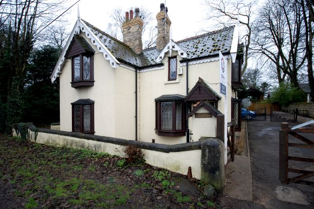 Thumbnail Detached house to rent in York Road, Scawthorpe