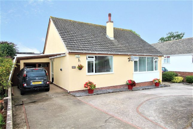 Thumbnail Detached bungalow for sale in Goodrington Road, Paignton