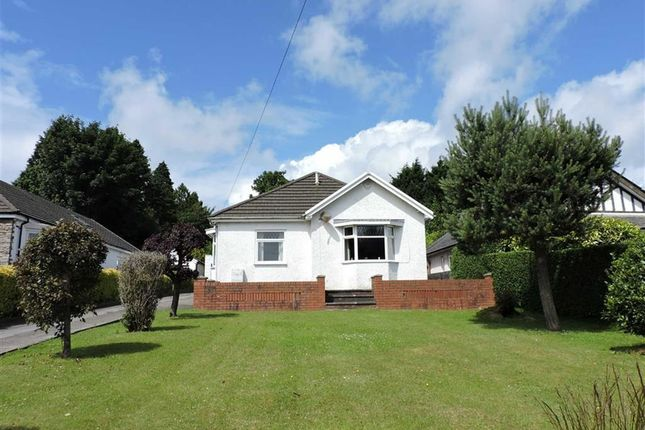 Thumbnail Detached bungalow for sale in Glynderwen Crescent, Derwen Fawr, Sketty