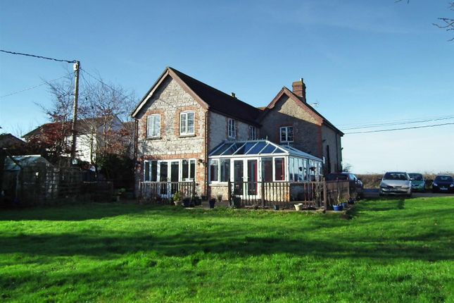 Thumbnail Cottage for sale in Pulham, Dorchester