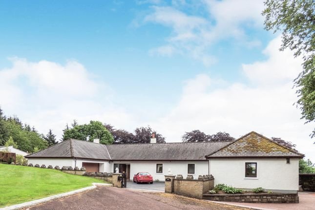 Thumbnail Detached house for sale in Mauldslie Road, Garrion Bridge