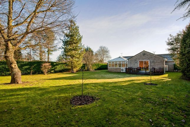 Thumbnail Detached bungalow for sale in Cromwell Close, Weeting, Brandon