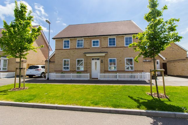 Thumbnail Detached house for sale in Beehive Lane, Hawkwell