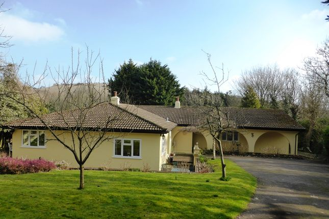 Thumbnail Detached bungalow for sale in Upper Road, Guston, Dover, Kent