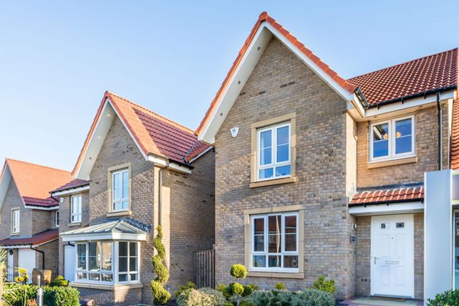 "Thumbnail Detached house for sale in ""Drummond"" at Whitehill Street, Newcraighall, Musselburgh"
