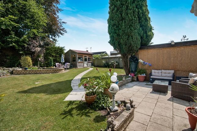 Thumbnail Detached bungalow for sale in Redcastle Road, Thetford