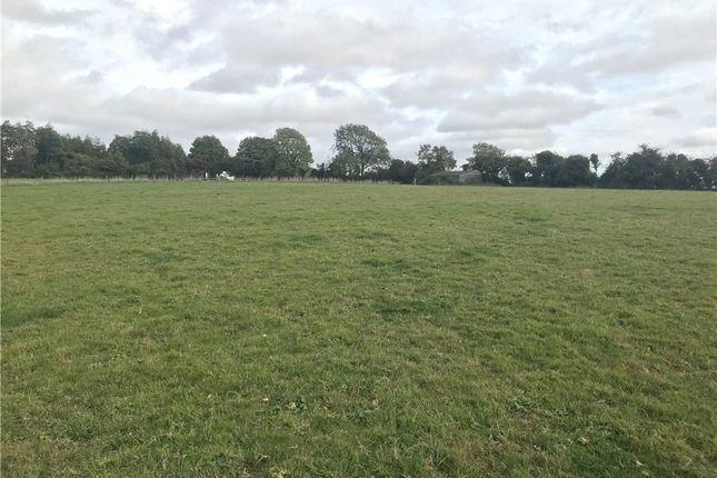 Thumbnail Land to rent in To Let, Land At Piddletrenthide, Dorchester, Dorset