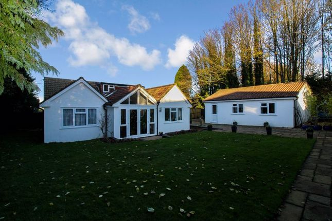 3 bed detached bungalow for sale in Alresford Drove, South Wonston, Winchester SO21