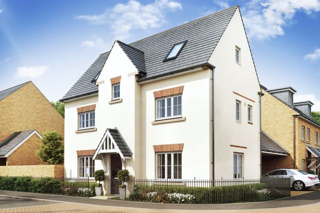 """Thumbnail Detached house for sale in """"Hexham"""" at Priorswood, Taunton"""