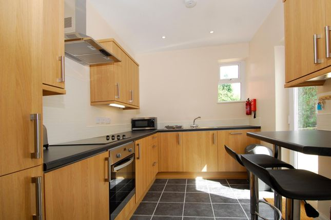 Thumbnail Property to rent in Central Park Avenue, Mutley, Plymouth