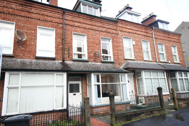 Thumbnail Terraced house to rent in Claremont Street, Belfast