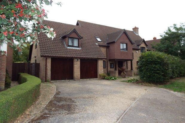Thumbnail Detached house to rent in Lavenham Drive, Biddenham, Bedford