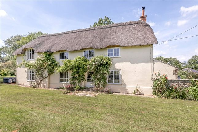 Thumbnail Detached house for sale in Buckland Newton, Dorchester