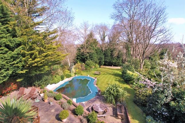 Thumbnail Detached house for sale in Downs Hill, Beckenham