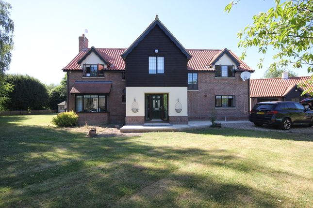 Thumbnail Detached house for sale in Low Common, Bunwell, Norwich
