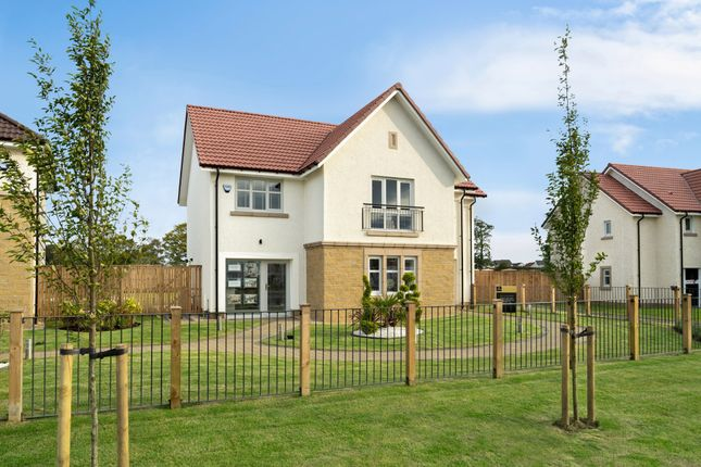 """Thumbnail Detached house for sale in """"Cleland"""" at Evie Wynd, Newton Mearns, Glasgow"""