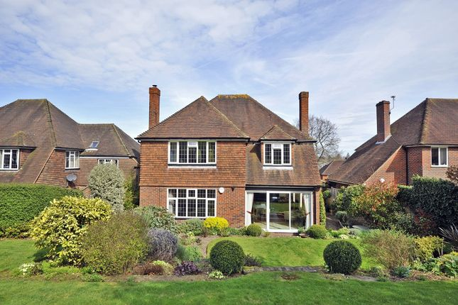 Thumbnail Detached house to rent in Pewley Way, Guildford