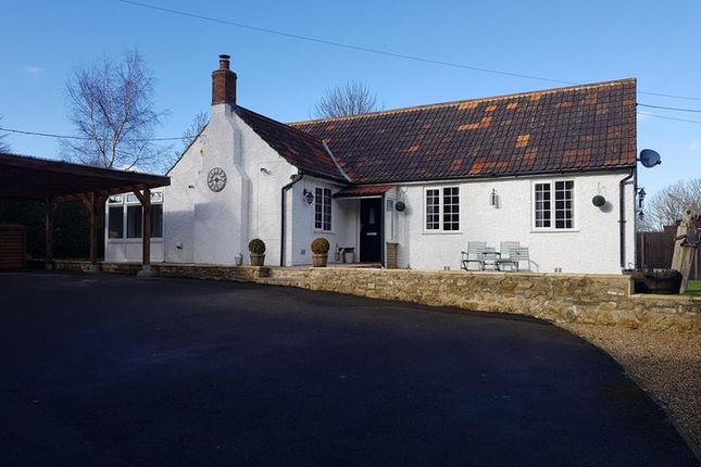 Thumbnail Detached bungalow for sale in Yeovil Road, Crewkerne