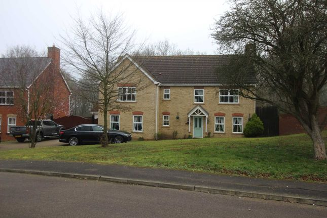 Thumbnail Detached house for sale in Maylands Drive, Braintree