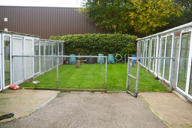 Thumbnail Commercial property for sale in Kennels, Cattery & Equestrian Businesses BD17, Charlestown, West Yorkshire