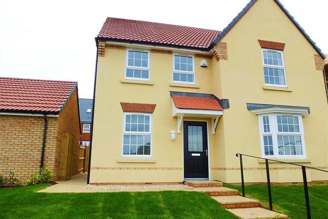 Thumbnail Property to rent in Aginhills Drive, Monkton Heathfield, Taunton