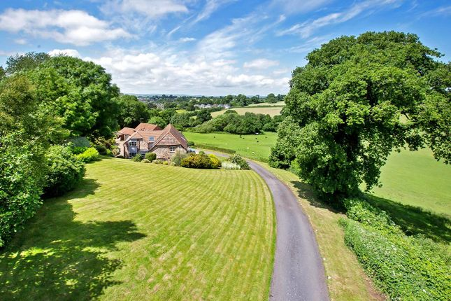 Thumbnail Detached house for sale in Exmouth Road, Lympstone, Devon