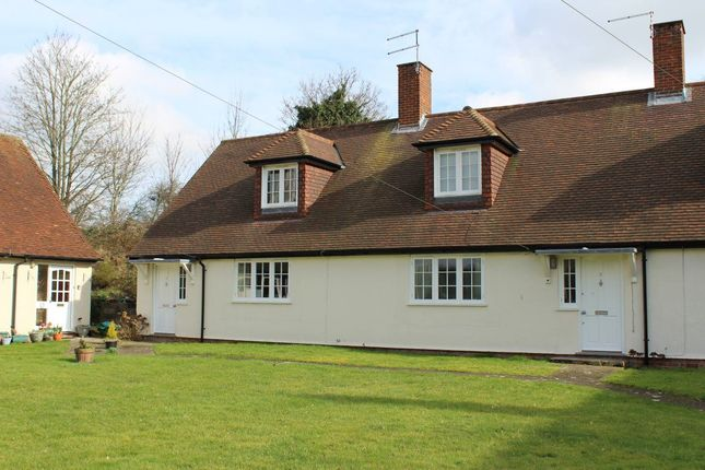 Thumbnail Property to rent in Oxford Road, Sutton Scotney, Hampshire