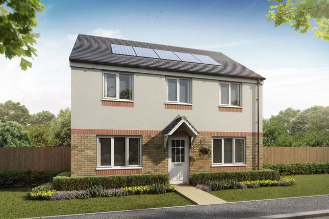 """Thumbnail Detached house for sale in """"The Ettrick"""" at Newfield Gardens, Stonehouse, Larkhall"""