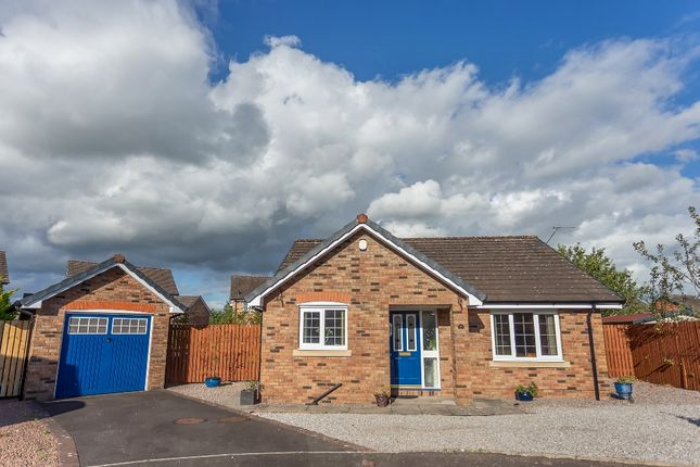 Thumbnail Detached bungalow for sale in Slater Place, Heathhall, Dumfries