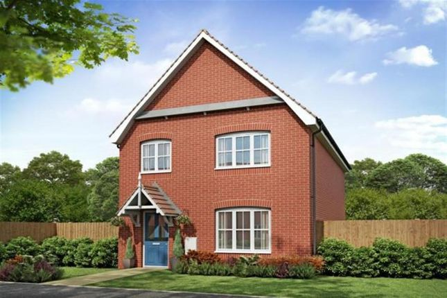 Thumbnail Detached house for sale in Chequers Road, Tharston, Norwich