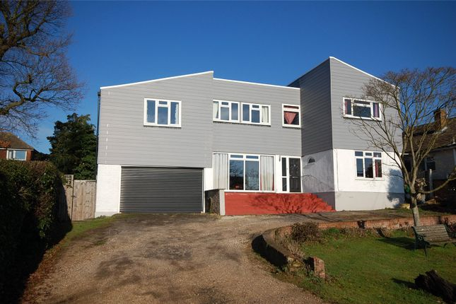 Thumbnail Detached house for sale in East Hanningfield Road, Rettendon Common, Essex
