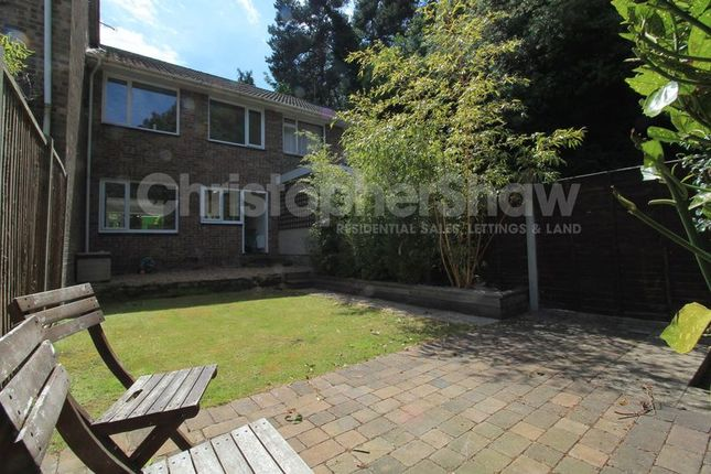 Thumbnail Terraced house to rent in Surrey Road, Poole