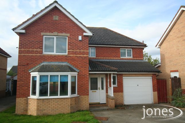 Thumbnail Detached house to rent in Jasper Grove, Stockton On Tees