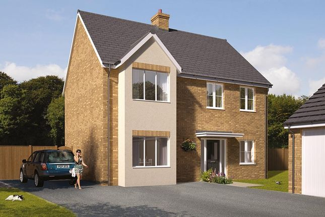 "Thumbnail Detached house for sale in ""The Durham"" at Great Melton Road, Hethersett, Norwich"