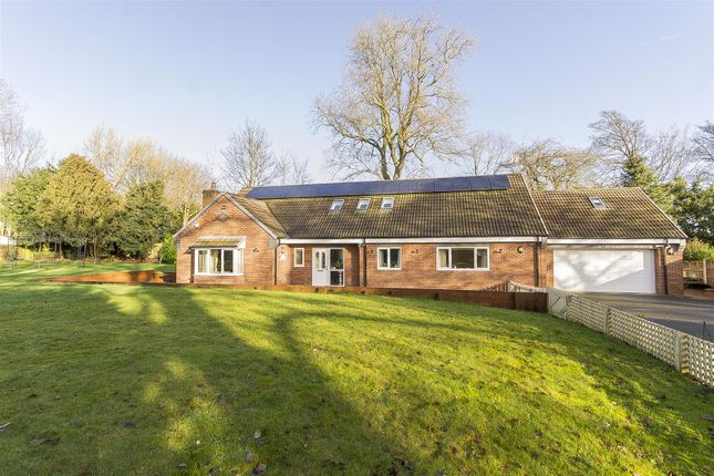 Thumbnail Detached bungalow for sale in St. Johns Road, Chesterfield