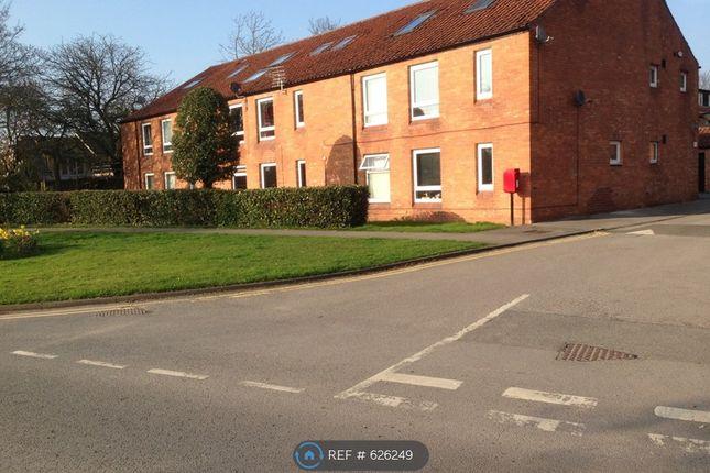 Thumbnail Studio to rent in Peel Close, York