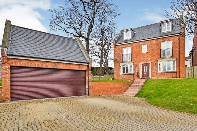 Thumbnail Detached house for sale in Pelaw Bank, Chester Le Street