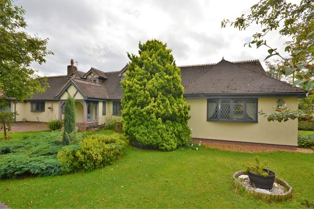 Thumbnail Detached bungalow for sale in Roe Lane, Westlands, Newcastle