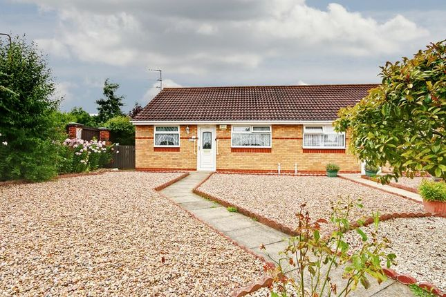 Thumbnail Bungalow for sale in Sable Close, Hull
