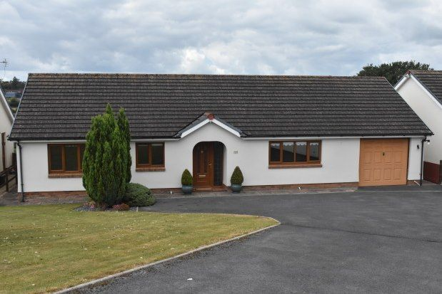 3 bed detached bungalow to rent in Trevaughan, Carmarthen SA31