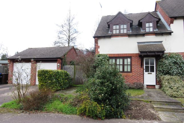 Thumbnail Property to rent in Ickworth Drive, Bury St. Edmunds