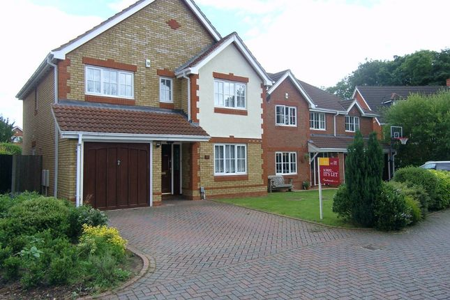4 bed detached house to rent in Dyer Road, Wokingham RG40