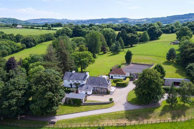 Thumbnail Detached house for sale in Moretonhampstead, Newton Abbot, Devon