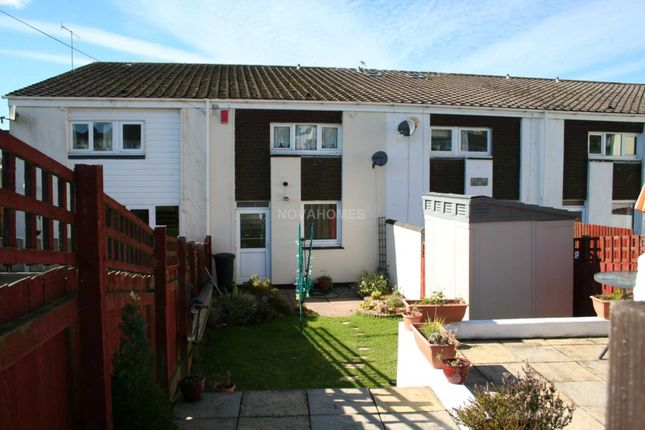 Thumbnail Terraced house to rent in Cunningham Road, Tamerton Foliot