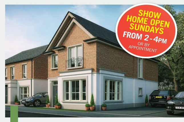 Thumbnail Detached house for sale in Hadlow Park, High Bangor Road, Donaghadee