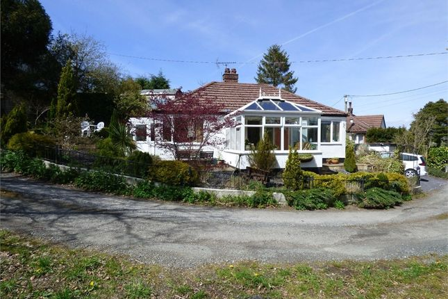3 bed detached bungalow for sale in Bryn Eithin, Tafarn-Y-Gelyn, Llanferres, Denbighshire