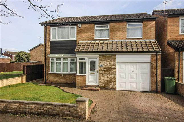 Thumbnail Detached house to rent in Kendal Drive, Eastfield Dale, Cramlington