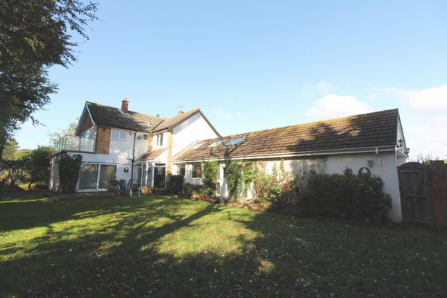 Thumbnail Detached house to rent in Lowestoft Road, Gorleston