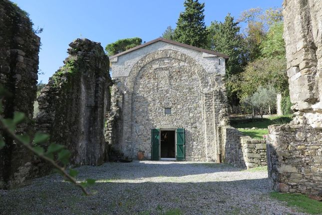 la spezia dating site Check out our list of the top things to do in la spezia, italy  the gallery has over 1,500 pieces dating from the 13th to the 18th century .